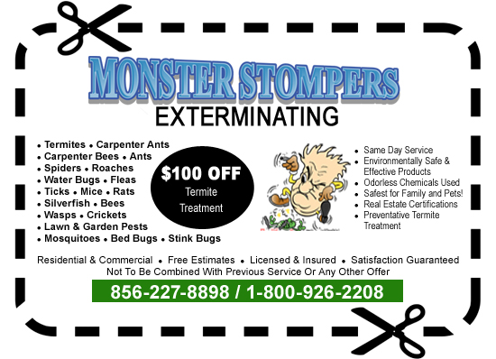 $100 off termite treatment pest control